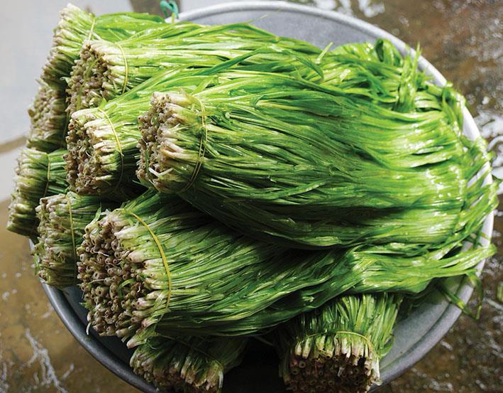Những loại rau mọc hoang xưa chỉ coi là cỏ dại nay thành đặc sản hiên ngang trên bàn tiệc hạng sang ở miền Tây - Ảnh 5.