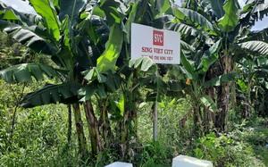 """Dự án Khu đô thị Sing - Việt bị """"treo"""" hơn 20 năm"""