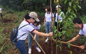 """Agribank Đắk Lắk: 1.000 cây xanh hưởng ứng phong trào """"Tết trồng cây đời đời nhớ ơn Bác Hồ"""""""