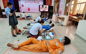 Công ty Điện lực Quảng Nam hiến 100 đơn vị máu cứu người