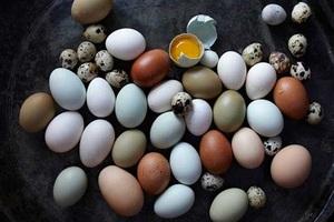 Ăn trứng gà, trứng vịt hay trứng cút tốt cho sức khỏe hơn?