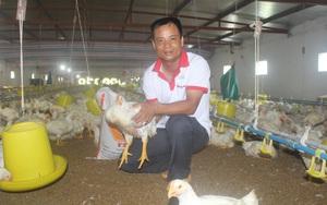 Hải Đông-Xã có nhiều tỷ phú nông dân, nuôi tôm trong bể xi măng tấp nập người xem