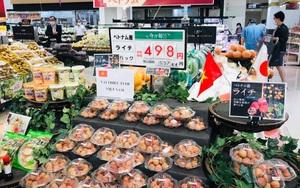 Bay sang Nhật Bản, giá vải thiều Việt tăng gấp 10 lần,  bán lẻ hơn 530.000 đồng/kg