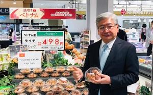 Hậu trường đưa vải thiều tươi sang Nhật Bản, chuyện giờ mới kể