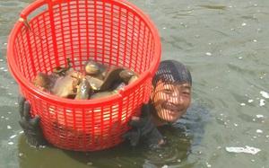 Rủ nhau nuôi cá rô đồng xuất khẩu sang Campuchia, 1ha thu 200 triệu