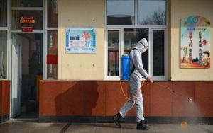 """Trung Quốc lại """"đau đầu"""" đối phó với nạn dịch hạch"""