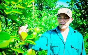 """Hà Tĩnh: Một nông dân """"trốn"""" lên núi đá trồng cây, nuôi con đặc sản, ai lên thăm cũng bất ngờ"""