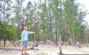 """Hà Tĩnh: Lão nông bị chê """"gàn dở"""", 92 tuổi vẫn gác rừng phi lao"""