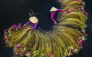 Phong cảnh Việt Nam từ trên cao được vinh danh
