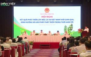 Mắc ca Việt Nam cần phải được đầu tư thương hiệu hơn nữa