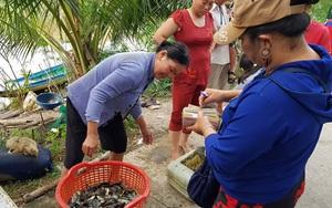 Long An: Đưa hàng tấn cá đồng, bông súng ma, hẹ nước và vô số sản vật vùng lũ lên phố
