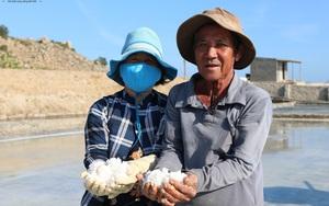 Ninh Thuận: Đầu năm giá muối rớt thê thảm, bán 1 tạ muối chưa mua nổi 1 tô phở, đầu nậu hé lộ điều gì?