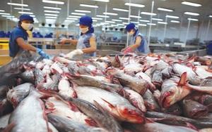 Kim ngạch xuất nhập khẩu năm 2021 có thể cán mốc 600 tỷ USD