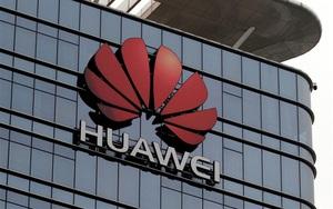 5 doanh nghiệp Trung Quốc bị Mỹ coi là mối đe dọa an ninh quốc gia