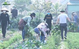 Hải Dương: Gỡ khó giúp nông dân, huyện Tứ Kỳ hỗ trợ tiêu thụ hàng nghìn tấn nông sản trong mùa dịch