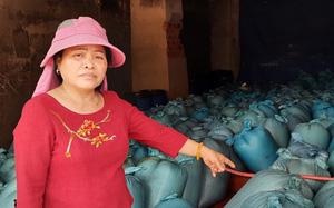 5 năm sau sự cố môi trường biển Fomorsa: Hàng trăm tấn hải sản tồn kho, hôi thối chưa được tiêu huỷ ở Quảng Trị