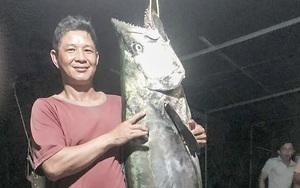 Quảng Ngãi: Lần đầu tiên câu được cá thu gần 50 kg, mặc thương lái trả mỏi mồm, chủ đem xẻ thịt chia cả xóm