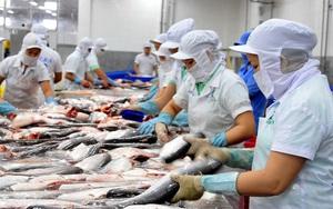 Thủy sản vượt rào, tăng tốc xuất khẩu vào Mỹ, EU