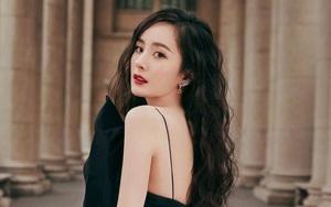 Vì sao Dương Mịch đắt giá nhất showbiz Trung Quốc?
