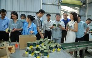 Chủ tịch TƯ Hội Nông dân Việt Nam: Quả dứa sẽ là hướng đi mở cho người nông dân ở Mường Khương