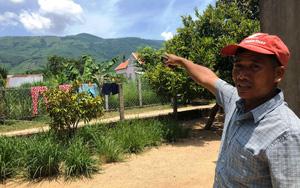Chủ tịch Bình Định yêu cầu kiểm tra vụ người dân thắc mắc cấp đất rừng cho cán bộ