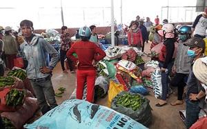 Chuyện lạ Bình Thuận: Cắt hoa thanh long bán giá ngang ngửa với bán trái, hoa thanh long biến thành món hoa bá vương