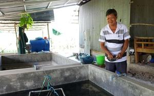 Một ông nông dân Cần Thơ nuôi lươn giống không bùn trong bể xi măng, nhiều người kéo đến xem