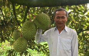 Kỷ niệm 91 năm thành lập Hội Nông dân Việt Nam: Hoạt động Hội đi vào thực chất, quan tâm đời sống nông dân