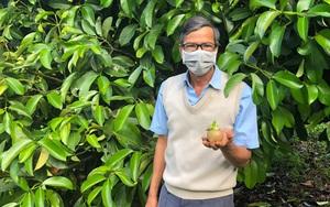 Lâm Đồng: Trồng vườn cây đặc sản, mới hái trái từ 250 cây mà một nông dân đã thu 500 triệu