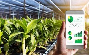 Chuyển đổi số trong nông nghiệp là xu hướng toàn cầu