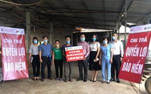 Bảo hiểm Agribank chi trả quyền lợi bảo hiểm vật nuôi tại Ba Vì, Hà Nội