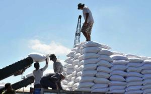 Đường nhập khẩu tăng 5735%, ngành mía đường lâm nguy