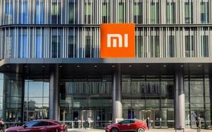 Được Mỹ loại khỏi danh sách đen, cổ phiếu Xiaomi tăng mạnh