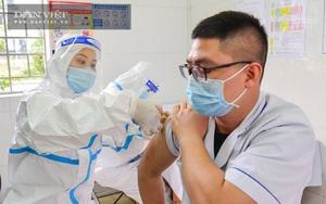 Bộ Y tế yêu cầu doanh nghiệp báo cáo năng lực cung ứng, bảo quản vắc xin Covid-19