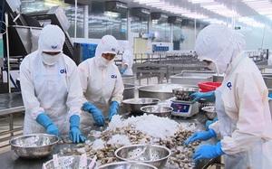 Dịch Covid -19 diễn biến phức tạp, xuất khẩu thủy sản vẫn tăng mạnh