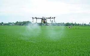 Hải Dương: Dùng máy bay không người lái phun thuốc trừ sâu cho lúa, vừa giảm chi phí vừa bảo vệ sức khỏe nông dân