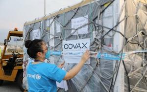 """Nỗ lực """"phủ sóng"""" vắc xin Covid-19 (bài 1): """"Cuộc đua"""" ở Việt Nam"""