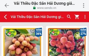 Vải thiều Thanh Hà chính thức lên Sendo, 4 tiếng bán hết veo 3 tấn
