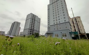 """Hà Nội: 3 tòa chung cư trên """"đất vàng"""" không có người ở, kim tiêm la liệt"""