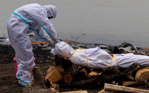 Các quan chức Ấn Độ bị cáo buộc che giấu số lượng nạn nhân thiệt mạng do Covid-19