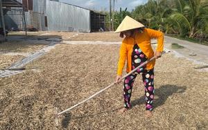 Cà Mau: Cả làng vứt đi thứ rác gì mà nông dân này nhặt về phơi phóng đem đi bán lại kiếm bộn tiền?