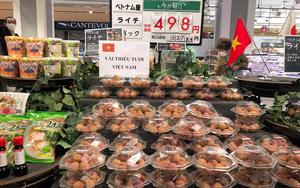 Vải thiều Việt Nam được yêu thích tại thị trường Nhật Bản
