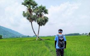 """Tây Ninh: Bất ngờ """"cây tình yêu"""" lại sống bên nhau trọn đời trong sự hồi hộp như muốn """"rụng tim"""" của nhiều người"""