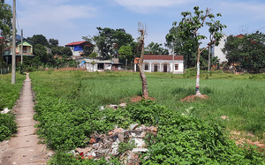 Vĩnh Phúc: Dự án cấp đất dịch vụ gần 10 năm chưa giải quyết xong, biến thành bãi rác và phế thải