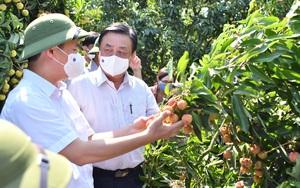 Bộ trưởng Lê Minh Hoan hứa sẽ kiến nghị Thủ tướng việc khó Bắc Giang không giải quyết được trong tiêu thụ vải thiều