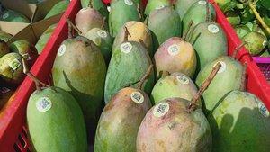 Nông dân Sơn La sẽ livestream bán nông sản trên nền tảng số