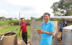 Bình Thuận: Bạc hà là cây gì mà dân ở đây trồng thơm cả cánh đồng, nấu ra tinh dầu bao nhiêu đều bán hết?