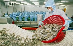 Xuất khẩu thủy sản vào thị trường Hoa Kỳ tăng 28% so với cùng kỳ năm 2020
