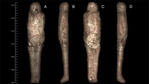 """Bí ẩn rùng rợn về """"kén xác ướp"""" trong quan tài Ai Cập hơn 3.000 năm tuổi"""