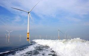 """Cà Mau: Bị """"tuýt còi"""", chủ đầu tư dự án điện gió """"xin"""" cấp phép cho 84 lao động Trung Quốc"""